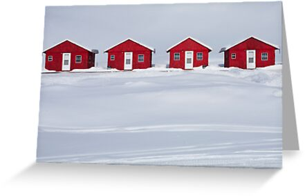 Four Red Cabins in Winter by Randall Nyhof