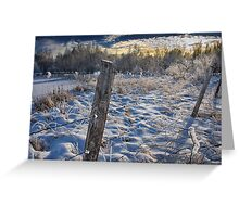 Morning Frost in Alberta Greeting Card