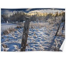 Morning Frost in Alberta Poster