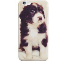 Australian Shepherd Puppy Dog  iPhone Case/Skin