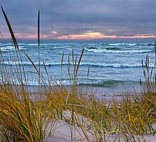 Sunset Photograph of a Dune with Beach Grass at Holland Michigan No. 0199 by Randall Nyhof
