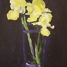 Velvet Irises by byler2
