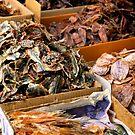 Dried Street Food in Bangkok by skellyfish