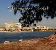 PostCard Extravaganza: Clearwater by artisandelimage
