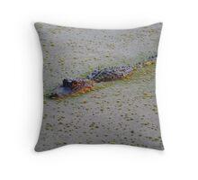 Floating Alligator Throw Pillow