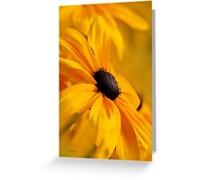 Yellow Daisy Flower Art Greeting Card