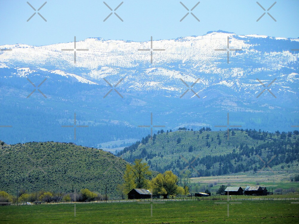 Simple Country Pleasures by Betty  Town Duncan