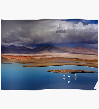 ATACAMA DESERT - CHILE Poster