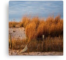 Dune Grass & Fence Canvas Print
