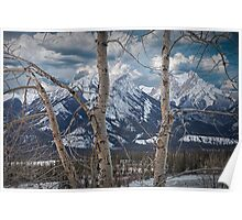 Jasper Mountain Range in December Poster