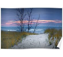 Sunset Photograph of Trees and Dune with Beach Grass at Holland Michigan No. 0241 Poster