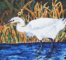 Egret Wading in the Marsh by Jennifer Ingram