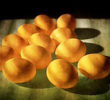 Eggs lit through Venetian Blinds No.6454 by Randall Nyhof