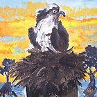 Osprey at Sunset by Jennifer Ingram