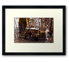 Bring On The Sun! Framed Print