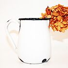 dried hydrangea in enamel pitcher by Lynne Prestebak