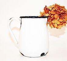 dried hydrangea in enamel pitcher by Lynne Prestebak