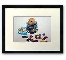 Orange Pudding Hamster Framed Print