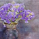 Shades of Violet by jules572