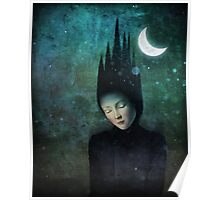Moonlit Night Poster
