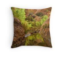 Willow Gulch Throw Pillow