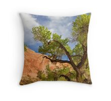 Willow Gulch Cottonwood Throw Pillow