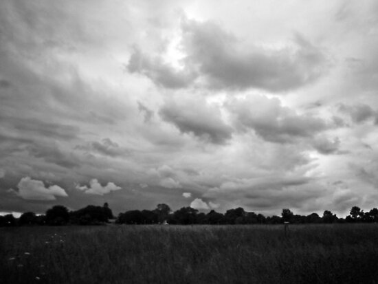 Field of Clouds by TomG88