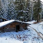 Cabin in the Snow by DarthIndy