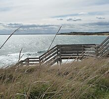 Stairs: Phillip Island, Australia by Sally Kate Yeoman