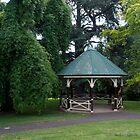 Under Nature's Green Umbrella by John Sharp