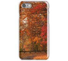 Past Peak iPhone Case/Skin