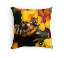 Bee on Orange Throw Pillow