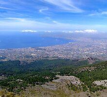 Napoli ed il Golfo dal Vesuvio by castellanodoc