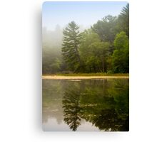 Foggy Morning Landscape Canvas Print