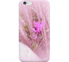 Ciclamen in pink iPhone Case/Skin