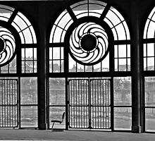 Carousel Doors by pivotalimage