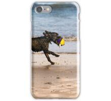 Dog &ball- Filey, iPhone Case/Skin