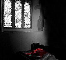 Sleeping Beauty by Samantha Higgs