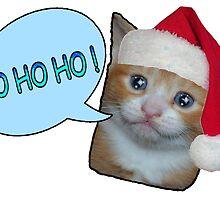 CHRISTMAS CAT V2 by Jordan Williams