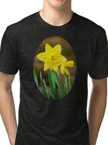 Beautiful Daffodils Tri-blend T-Shirt