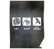 Eat, Sleep, Slay Dragons Poster