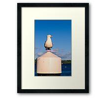 Harbour Master Framed Print
