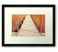 King Midas's Bridge - From The 'King Midas Series' Framed Print