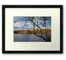 Hall Lake in Autumn No 0118 Framed Print