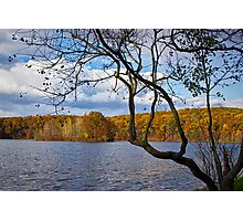 Hall Lake in Autumn No 0118 Photographic Print