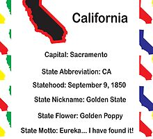 California Information Educational Poster by ValeriesGallery