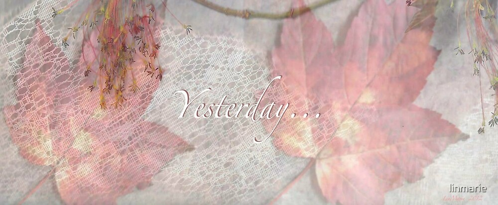 Yesterday... by linmarie