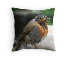 """ Bedraggled"" Robin Throw Pillow"