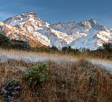 Frosty Morning at Mount Cook / Aoraki by Christine Smith