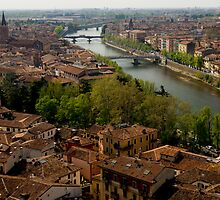 Verona City Scape from Castel San Pietro by Cliff Williams
